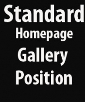 £30 Standard Home Page Gallery Spot